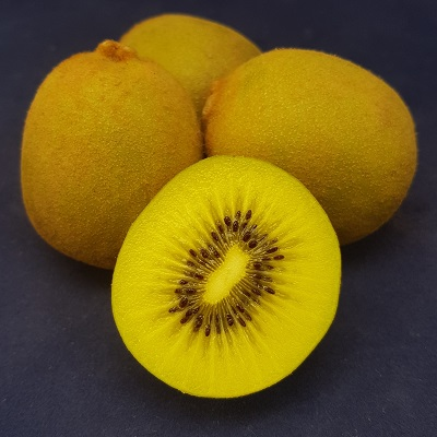 skelton yellow kiwi